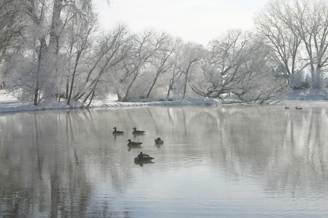 gallery_winter_04